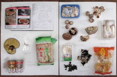Edible Matters: A Sensory Symposium