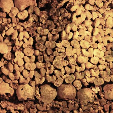 Stone Walks in Paris: The Catacombs