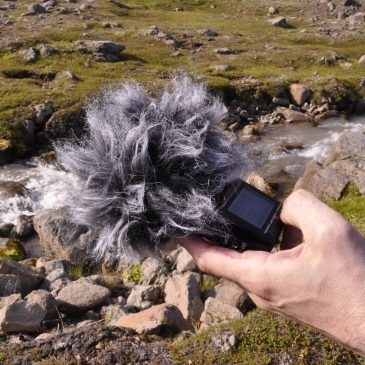 Sound Walks on the Fjord