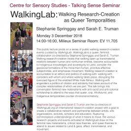 WalkingLab Public Lecture at Concordia University